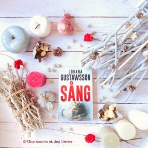 Sang Johana Gustawsson Une souris et des livres